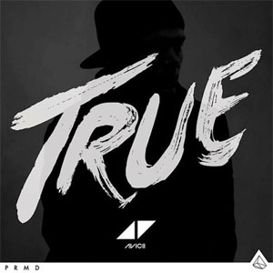 Avicii - Shame on Me