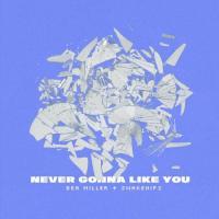 Never Gonna Like You