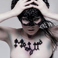 Björk - Where Is The Line?