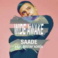 Wide Awake (Single)