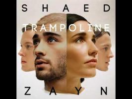Trampoline (stripped)