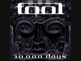 Tool - Vicarious