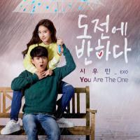 """You Are the One (From """"도전에 반하다""""), Pt. 1"""